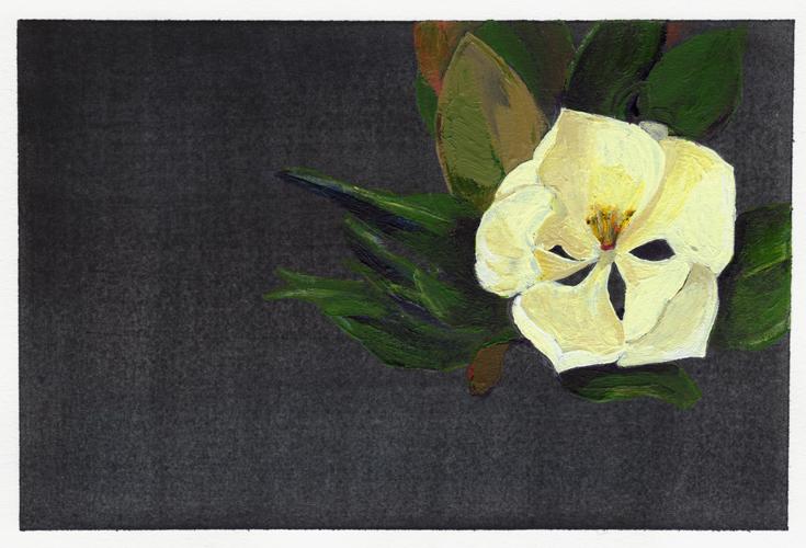 Magnolia033011