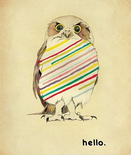 Hello_owl